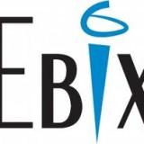 Ebix Inc (NASDAQ:EBIX)