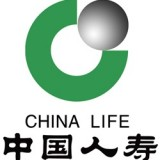 China Life Insurance Company Ltd. (ADR) (NYSE:LFC)