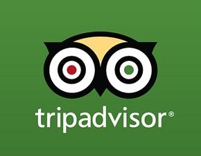 Resultado de imagen de Tripadvisor Inc
